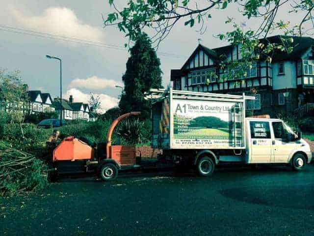 Tree Surgeons St Albans