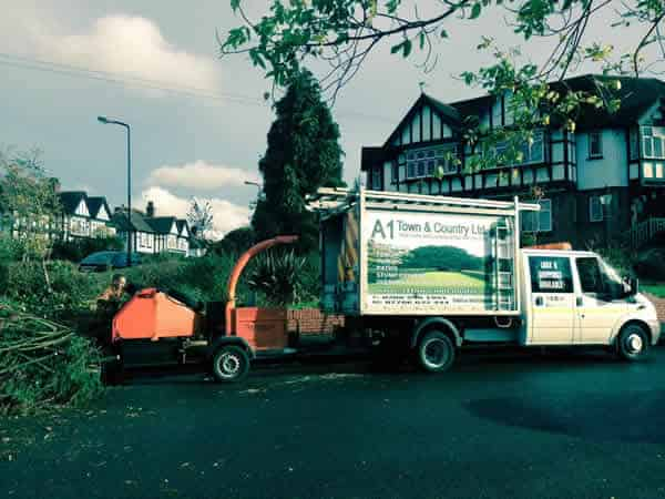 Tree Surgery Stevenage from A1 Town and Country